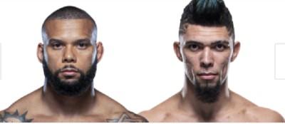 ufc fight night Santos vs Walker