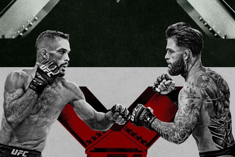 -ufc-fight-night-Font-vs-Garbrandt-scommesse-quote-pronostico